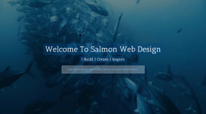 Website Designer in Salcombe | Website Design in Salcombe